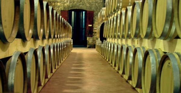 séminaire terroir et vignobles