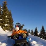 Activité luge de votre séminaire au ski
