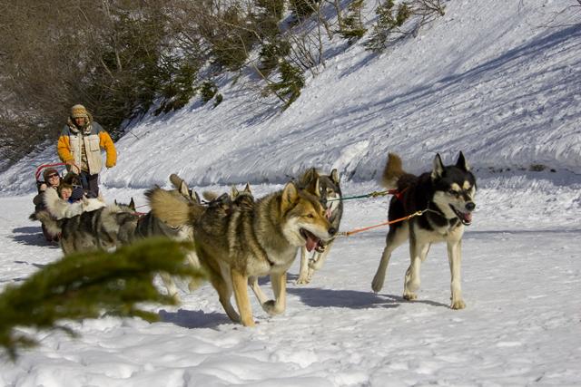Séminaire ski