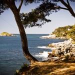 Séminaire découverte en Méditerranée à Bandol, Porquerolles et Marseille