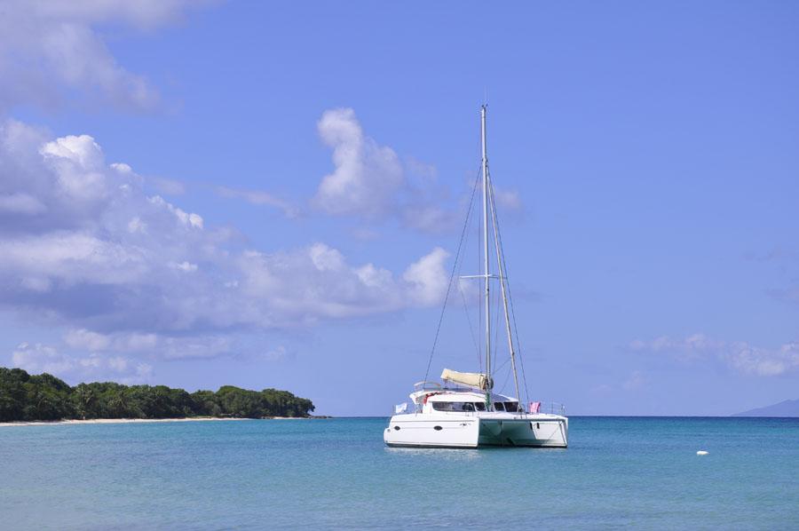 Guadeloupe Janvier 2012 - 389
