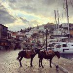 Séminaire de travail sur une île Grecque