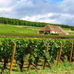 Séminaire incentive en Bourgogne